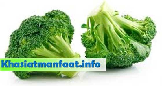 Manfaat Brokoli bagi Kesehatan Tubuh