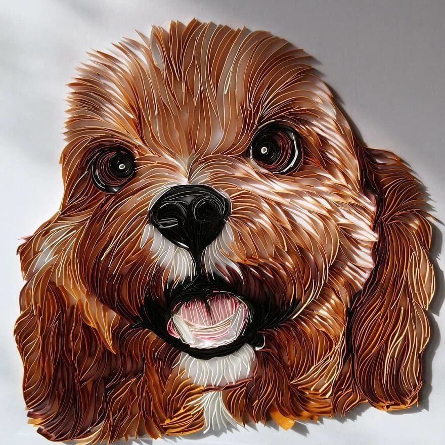 01-Cocker-Spaniel-Puppy-Bekah-Stonefox-www-designstack-co