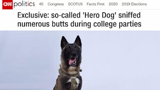 https://babylonbee.com/news/cnn-uncovers-evidence-hero-dog-sniffed-butts
