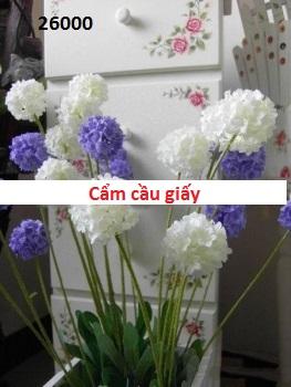 Phu kien hoa pha le o Nghia Tan