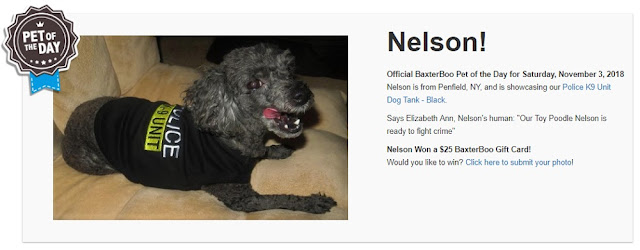 Nelson Is Pet Of The Day