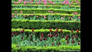 خلق النباتات وحديث القران