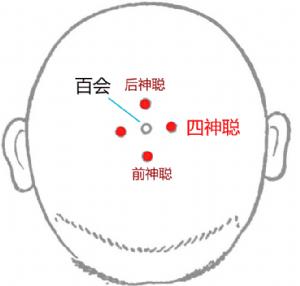 四神聰穴位 | 四神聰穴痛位置 - 穴道按摩經絡圖解 | Source:big5.wiki8.com