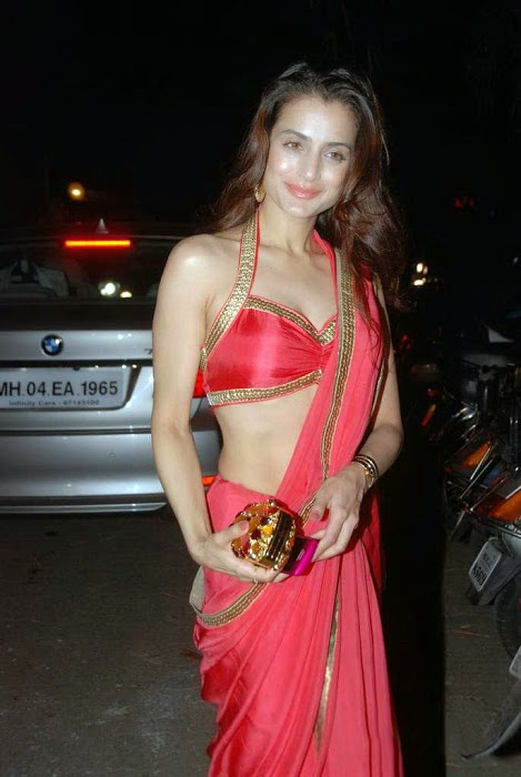 Amisha Patel Wiki, Height, Weight, Age, Affairs, Measurements, biography & More
