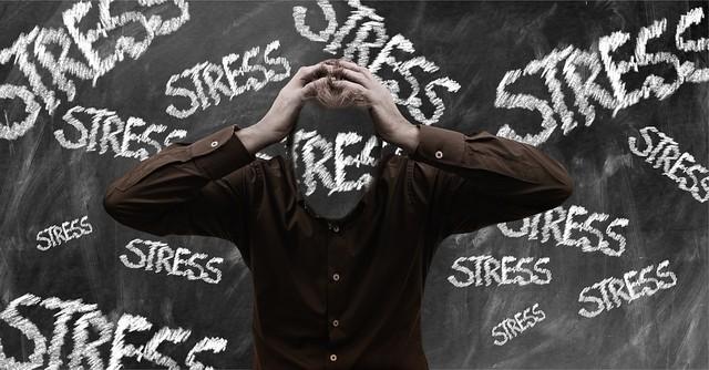 Estrés: fuente de agresión y violencia