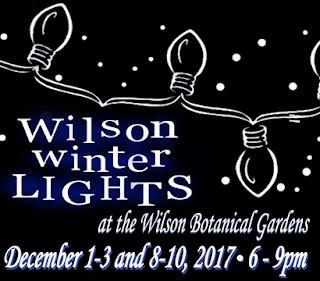 Wilson Nc Home Tour Dec