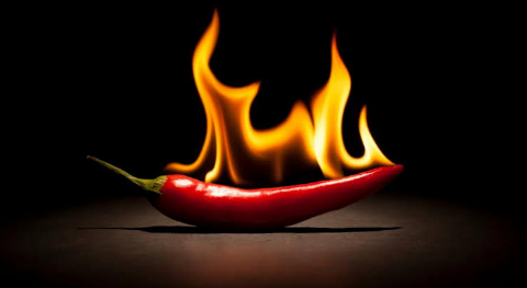 Chili Peppers Red Hot Will Spice Up Your Weight Loss! -Gymbodybuilders
