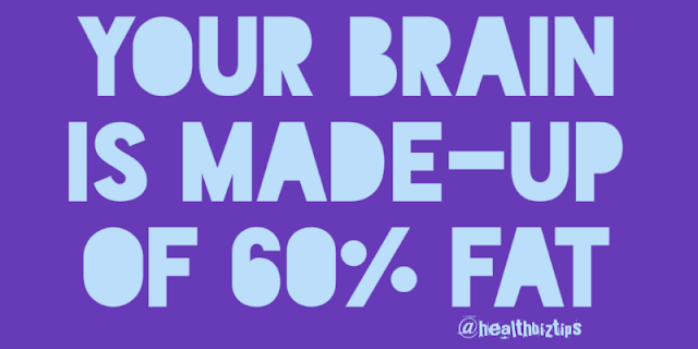10 Health Facts & Tips: Your brain is made-up of 60% fat.