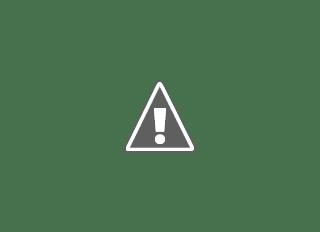 Sazali Consultancy, Accountant