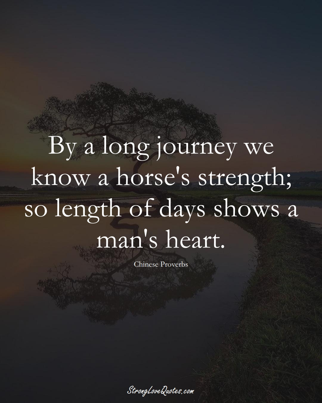 By a long journey we know a horse's strength; so length of days shows a man's heart. (Chinese Sayings);  #AsianSayings