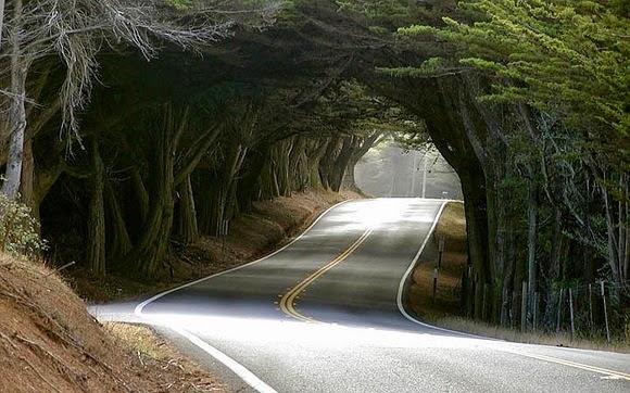 Hình ảnh những con đường đẹp, thơ mộng, lãng mạng