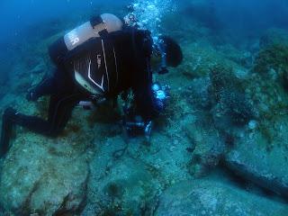 2021年6月16日の柏島ダイビング
