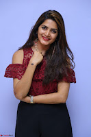 Pavani Gangireddy in Cute Black Skirt Maroon Top at 9 Movie Teaser Launch 5th May 2017  Exclusive 052.JPG