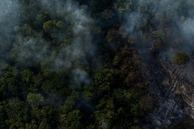 Fogo na Amazônia. Foto: Flavio Forner/Ambiental Media