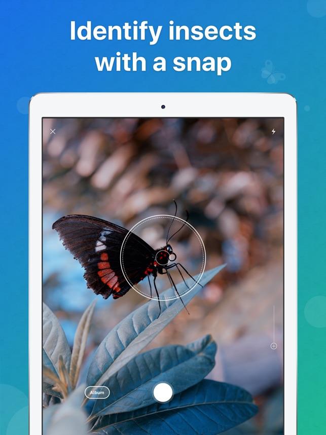 2-  تطبيق Picture Insect