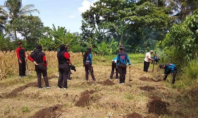 Saka Bhayangkara Ranting Seyegan Tanam Pohon Pisang Bersama Gugus Darma Kwarcab Sleman