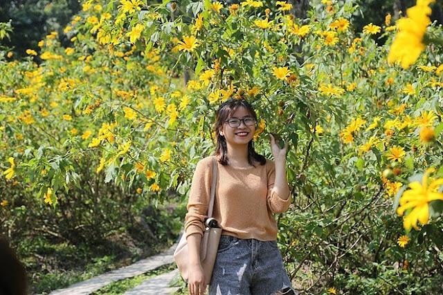"""Giới trẻ Hà Thành rủ nhau đi """"check-in"""" với hoa dã quỳ 4"""