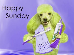 Funny%2BSunday%2BImages%2BHD%2B16