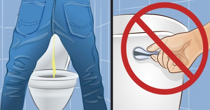 Debe saber esto antes de tirar la cadena del inodoro después de orinar