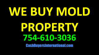Cape Coral Florida 33914 mold removal prices