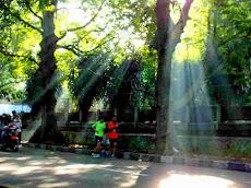 [Foto] Contoh Hasil Teknik Foto Ray of Light