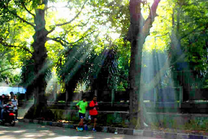 [Foto] Contoh Hasil Teknik Foto Ray of Light