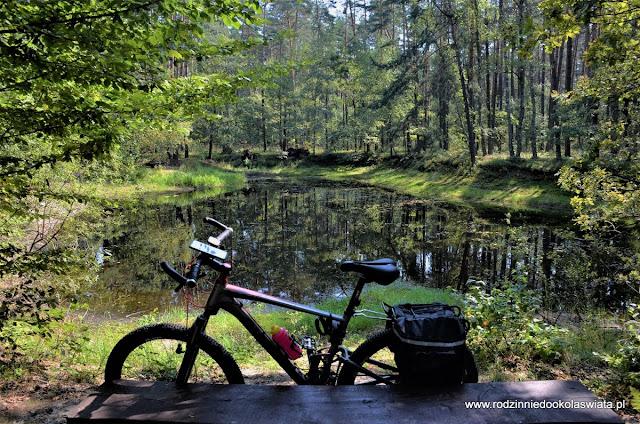 Małopolska z dziećmi- Puszcza Niepołomicka rowerem