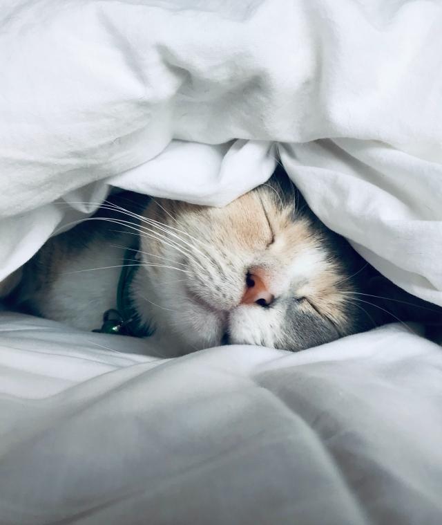 piumone in camera da letto