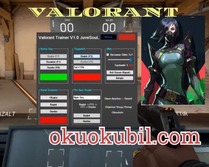 Valorant Trainer v1.0 Triggerbot İndir 2020