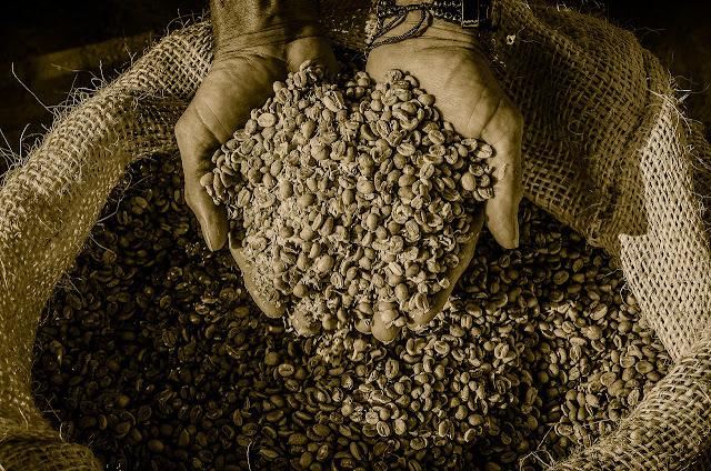 fermentasi kopi Andrew Hidayat KPK
