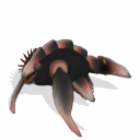 Criaturas del planeta Monlyth ~ Spore Galaxies: The Fallen Placodermo%2Bde%2Barrecife%2B3