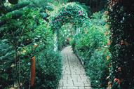 Terrazas De Flores Botanical Garden Cebu