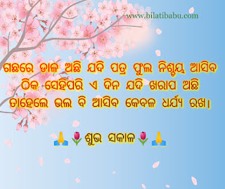 Odia whatsapp status , odia whatsapp status,odia WhatsApp status video,Odia status,Odia whatsapp status new,whatsapp status,best odia whatsapp status,new odia whatsapp status video,whatsapp status Shayari video,Odia love status,new whatsapp status message,odia WhatsApp status female,Odia WhatsApp status song