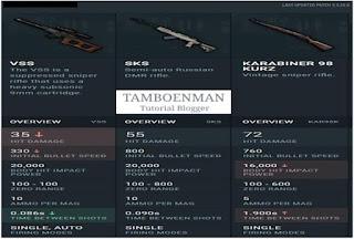 DMR ( Designated Marskman Rifle)