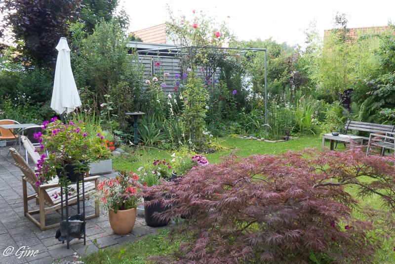Au jardin de gine temps gris et couleurs for Au jardin des couleurs
