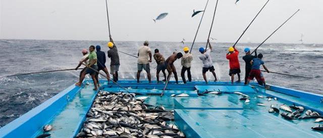 Asuransi Jiwa dan Penambahan Modal akan diatur dalam RUU Nelayan
