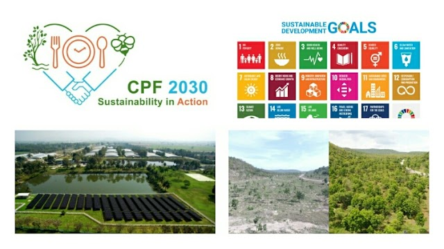"""CP Foods proclaims """"2030 Sustainability in Action"""" Strategy, to address all 17 SDGs"""