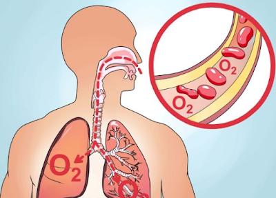 Oxigen ,ओक्सीजन का महत्व