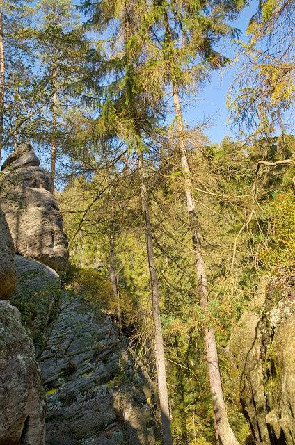 jesień skalne miasto pomysł na wyjazd