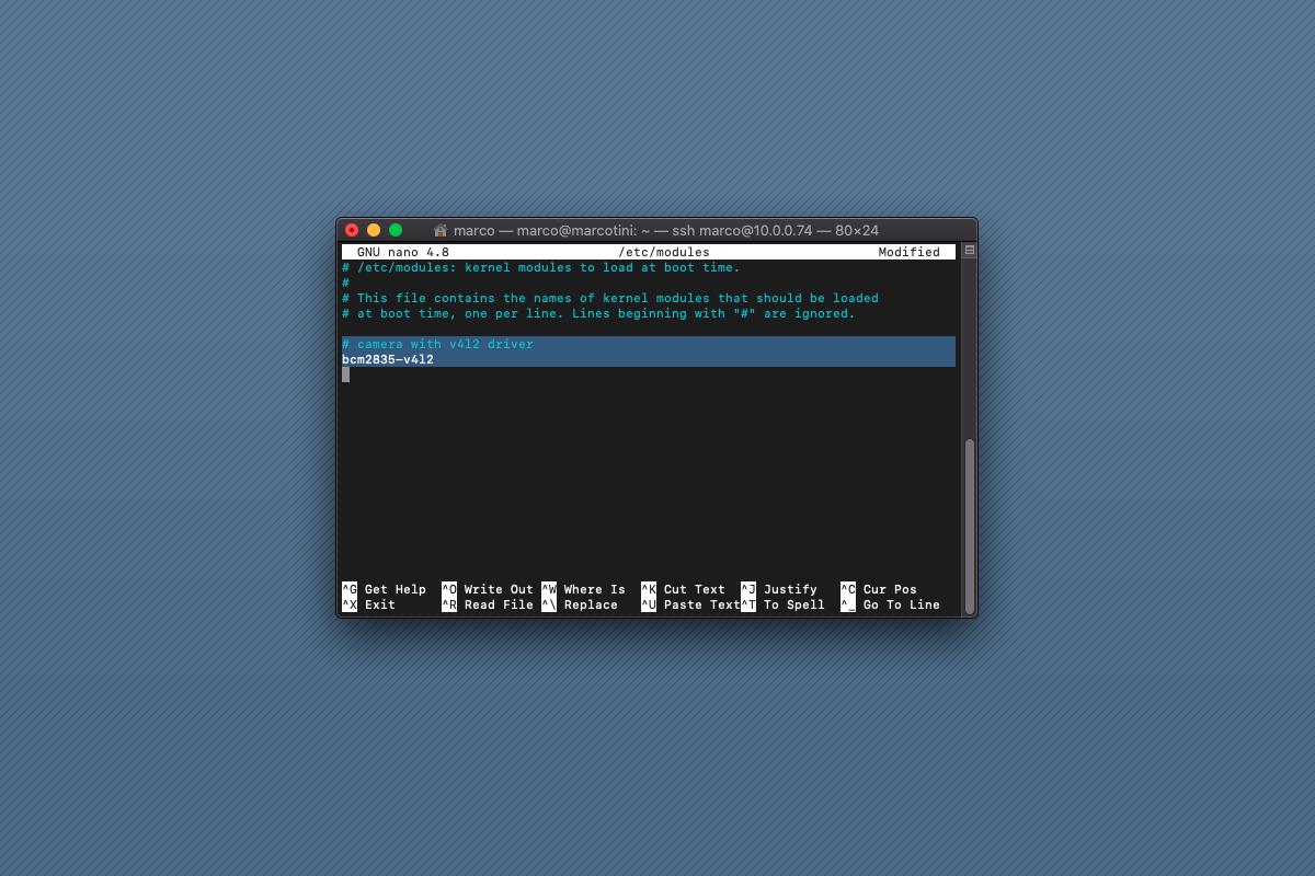 Se avete problemi con la camera del Raspberry Pi