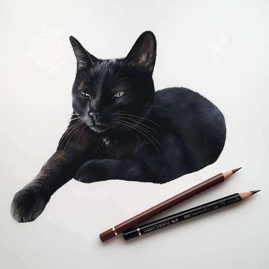 02-Black-Cat-Paula-www-designstack-co