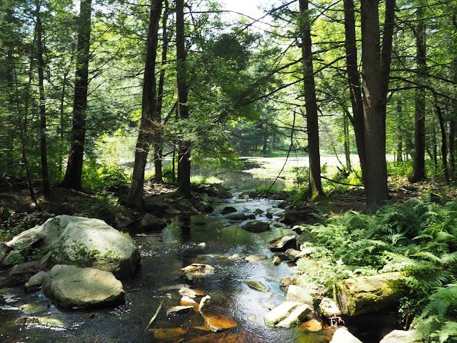 pulaski state park