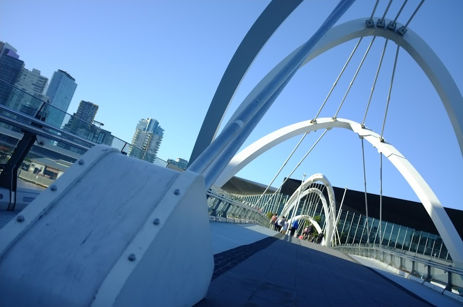 Melbourne yarra river tour by city bike, Docklands to Kings Garden