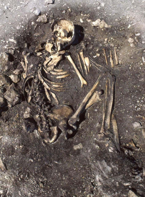 DNA increases our understanding of contact between Stone Age cultures in Sweden