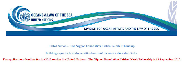 United Nations – The Nippon Foundation Critical Needs Fellowships [New York]: Apply by Sep 13 - Bivash Vlogs