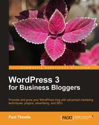 WordPress 3 For Business Bloggers (With Code)