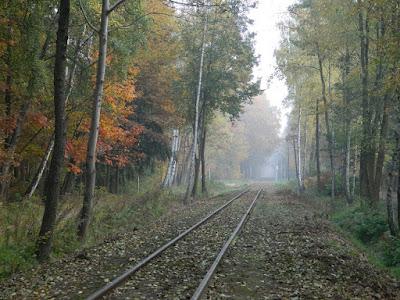 slow life, przyroda blog