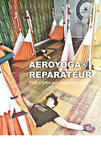 fly flying air yoga