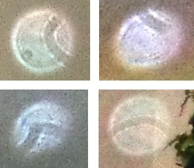 curved stripes in orbs