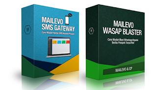 Mailevo whatsapp Blaster